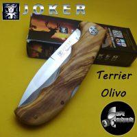 TERRIER OLIVO 7